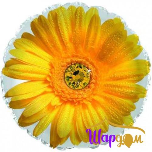 Гелиевый фольгированный круг гербера жёлтая